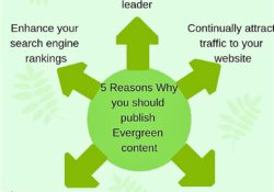 Why you should use Evergreen content in your blogs.