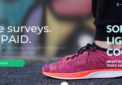 Survey Junkie take surveys get paid.